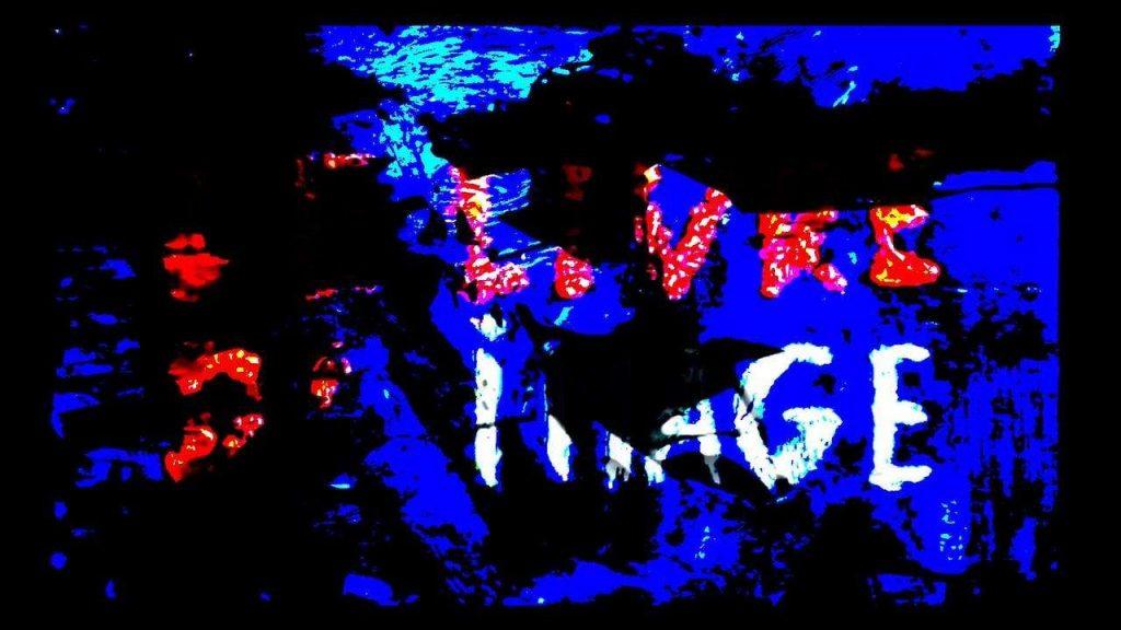 Le Livre Dimage The Image Book Godard