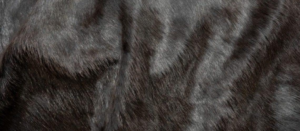 pelo-animal-fondo-textura-cuero-vaca-piel-natural-piel-vaca-negra-esponjosa_101276-113
